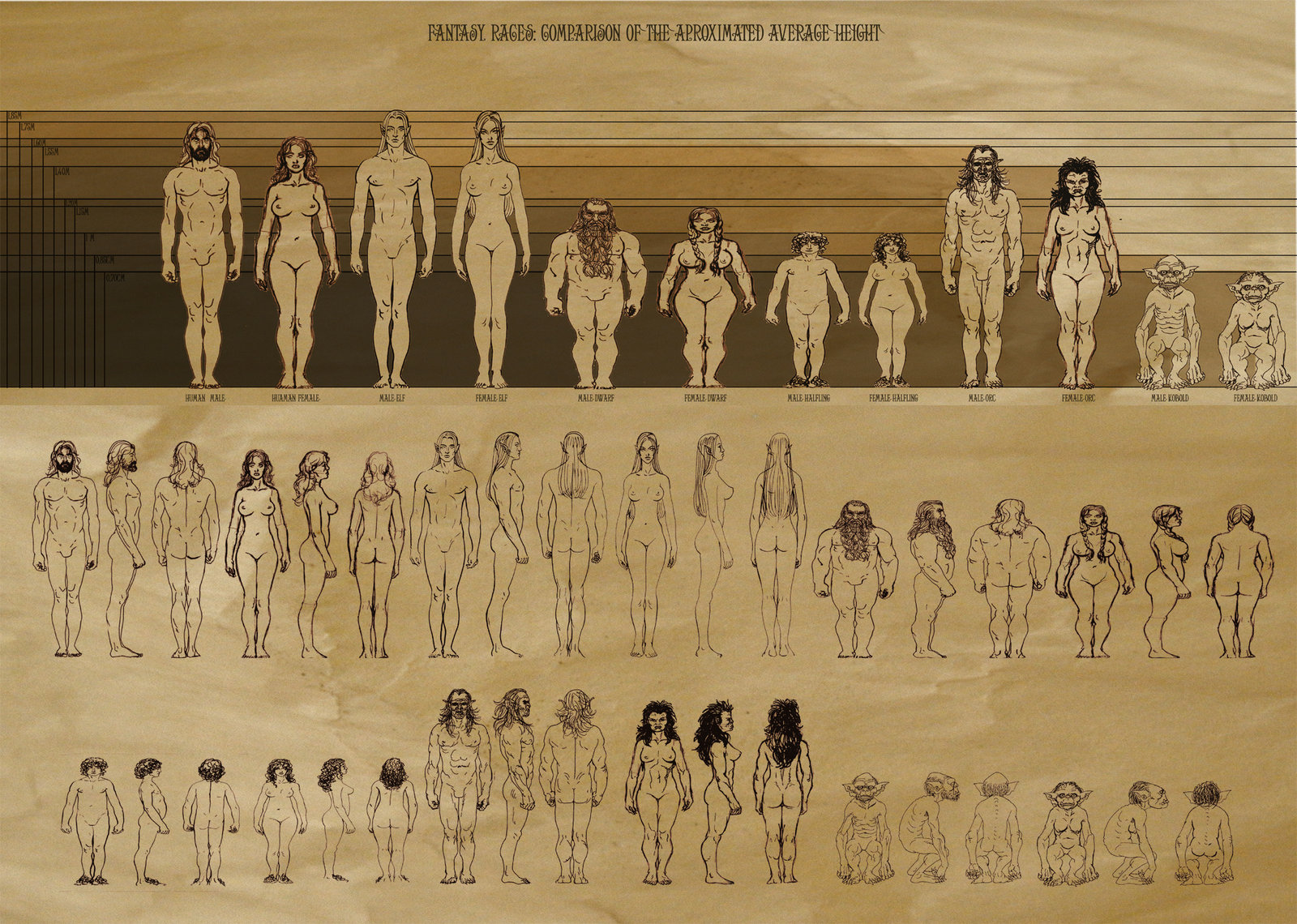 http://blogs.perl.org/users/byterock/RPG_Races_proportions_by_Artigas.jpg