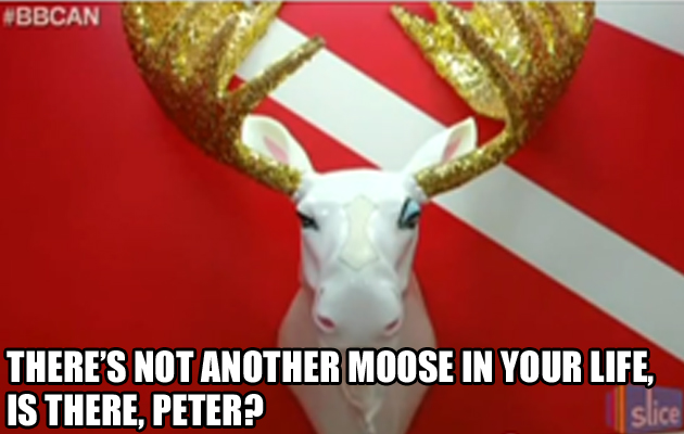 http://blogs.perl.org/users/byterock/another-moose-in-your-life1.jpg