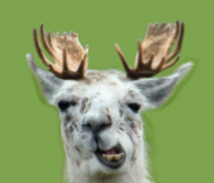 moose_plus_llama_makes_____by_iceclanwolfwarrior-d39um8i.png
