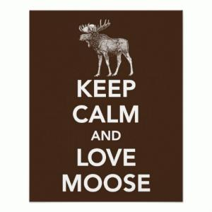 keep_calm_and_love_moose_print_or_poster-rcaa925f4af0e4ba5b4ef03a9e7a73d07_wvc_8byvr_512.jpg