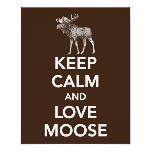 http://blogs.perl.org/users/byterock/keep_calm_and_love_moose_print_or_poster-rcaa925f4af0e4ba5b4ef03a9e7a73d07_wvc_8byvr_512.jpg